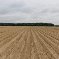T_10-5_GvW_Fürstenberg_0060