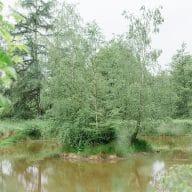 GvW_Fürstenberg_0340