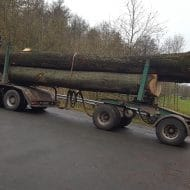 Holzabfuhr