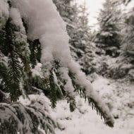 Stimmung_Schnee