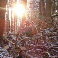Stimmung_Waldarbeit